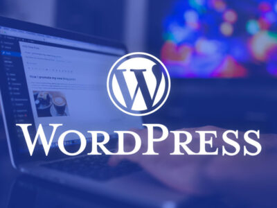 I will build clean and professional WordPress website design or blog